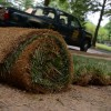 Typical Sod Problems And How To Avoid Them