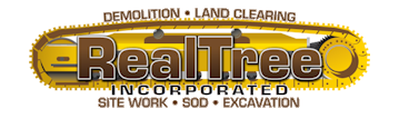 Real Tree Demolition Melbourne Florida