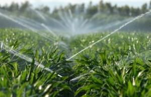 land-irrigation
